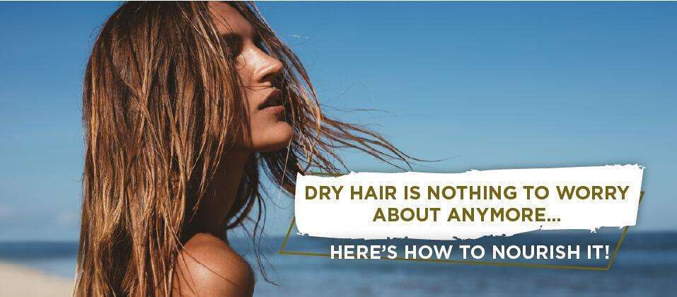 DRY HAIR IS NOTHING TO WORRY ABOUT ANYMORE… HERE'S HOW TO NOURISH IT!